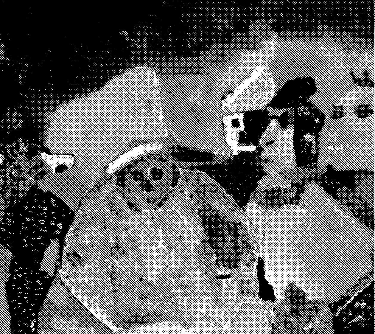 UYATI POG (BAR) -w/ WARTONE + M WITCH + SHUJI TERAYAMA